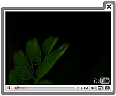 Facebook Page Video Player Overlay Embed Video Html