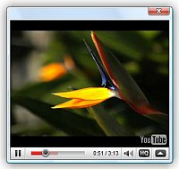 javascript lightbox video player Embed Video Link